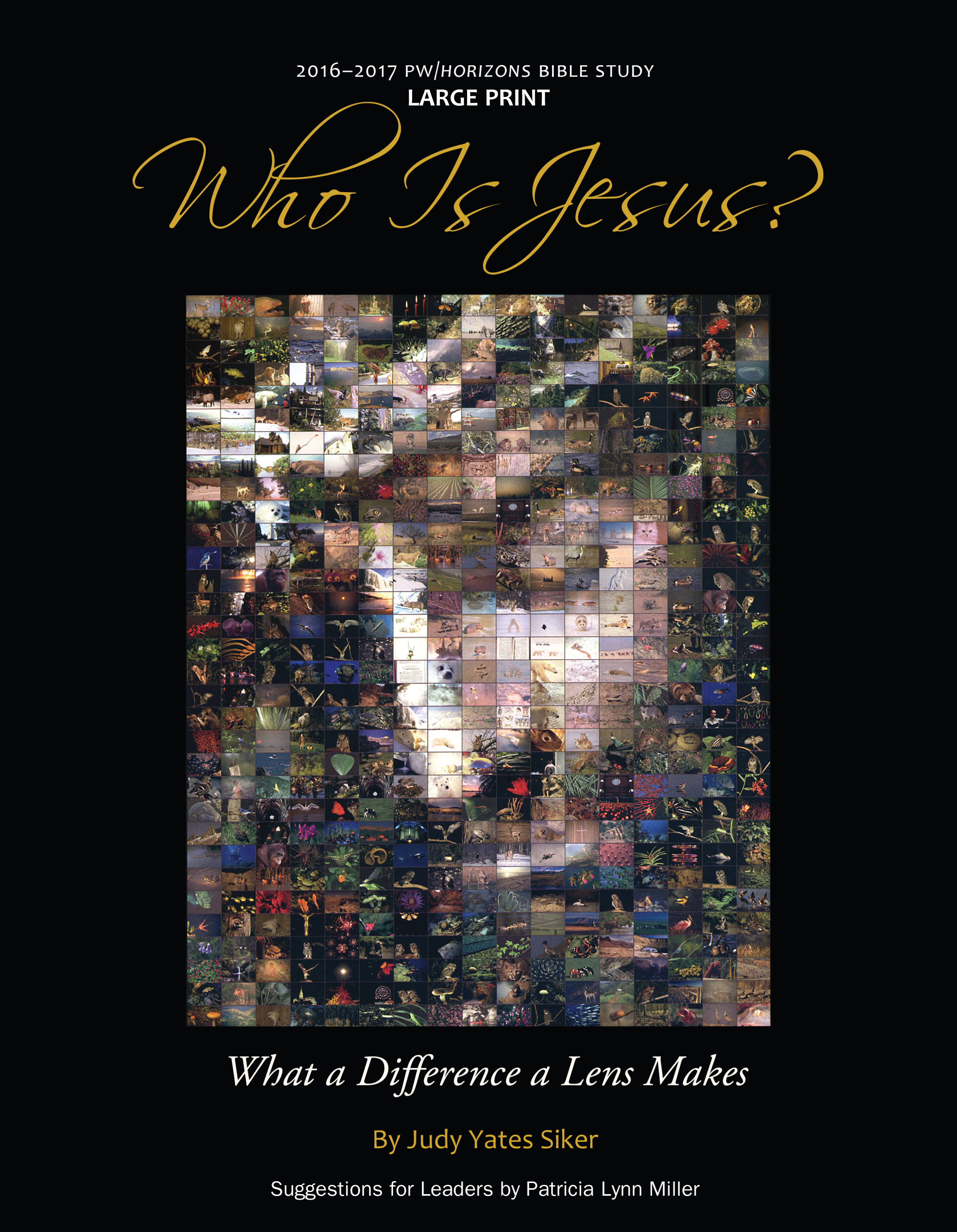 Who Is Jesus? Large Print