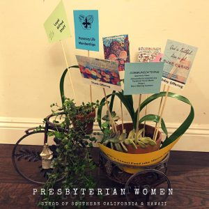 bicycle planter with cards showing PW programs