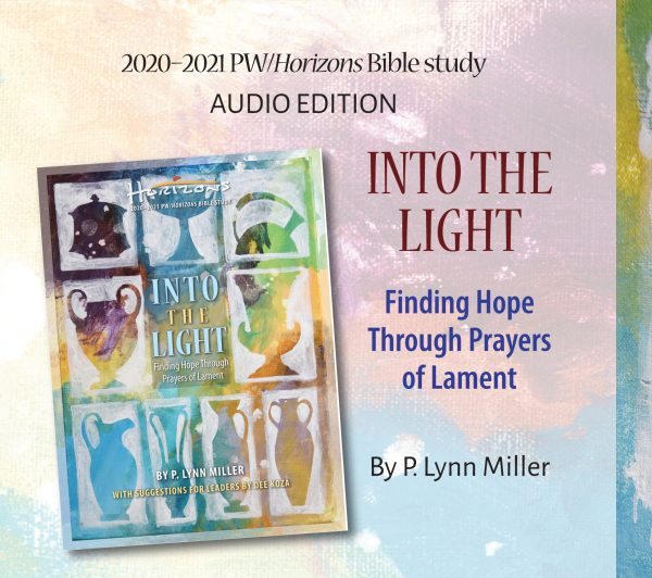 HZN20172 Into the Light audio